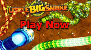Play Little Big Snake Online