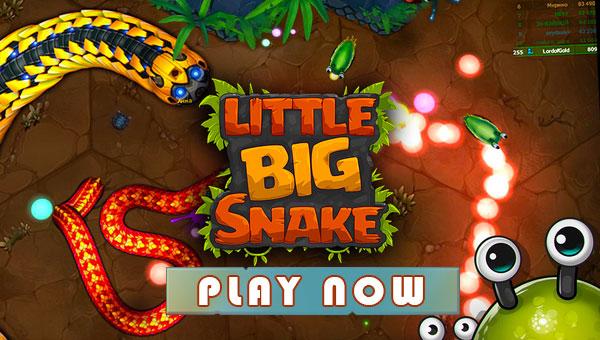 Play Little Big Snake Online
