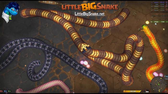 Little Big Snake Royal Education Program